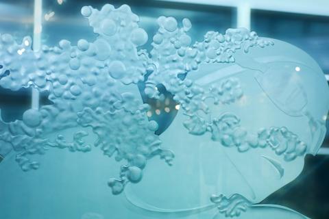 Roadcap-Quinilvan art at Karro Athletic Hall of Fame