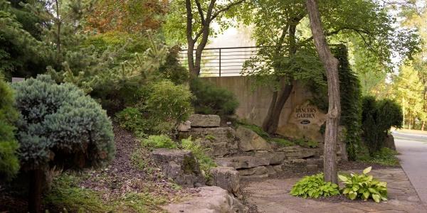 Dancer's Garden