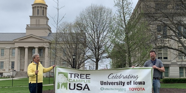Tree Campus USA 2019 award
