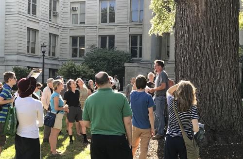 Tree Crew with Public
