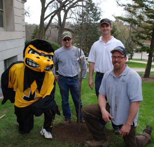 Herky and Tree Crew